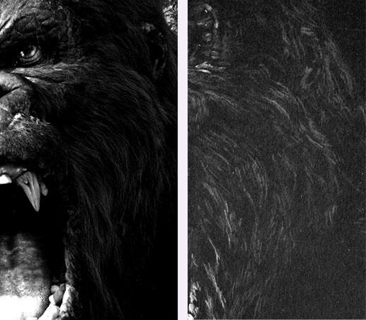 Poils gorille King Kong