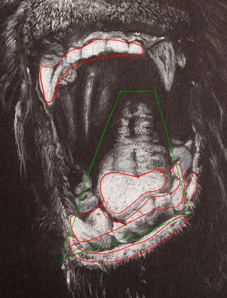 Technique De Dessin Realiste Portrait De King Kong Apprendre A