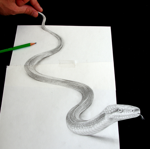 dessin_serpent_3d