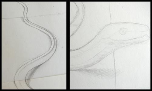 ombre_serpent_3d