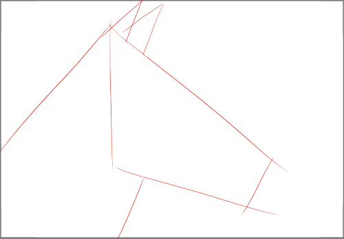 schéma_dessin_zèbre_1