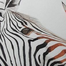 Cours de peinture gratuit : peindre un zèbre à l'aquarelle