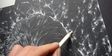 apprendre à dessiner un fond