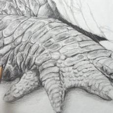 technique pour dessiner la peau d'un crocodile étape par étape