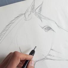 apprendre à dessiner un cheval par dessin-creation
