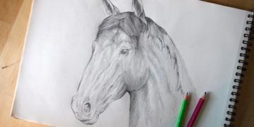 Dessiner un cheval au crayon facilement