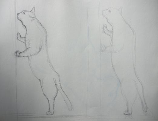 technique-de-dessin-chat-croquis
