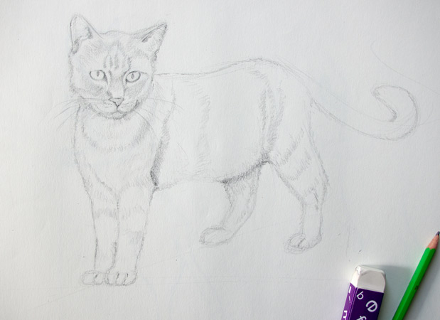 méthode pour dessiner facilement un chat au crayon