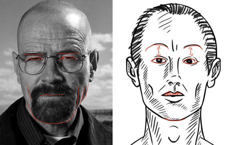 Trouver les différences anatomique pour dessiner un visage