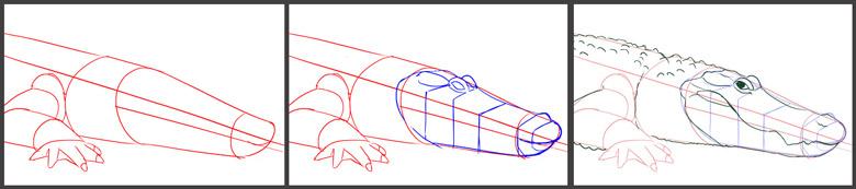 exercice de dessin et technique pour dessiner étape par étape
