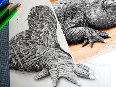 technique pour dessiner d'après une photo par dessin-création