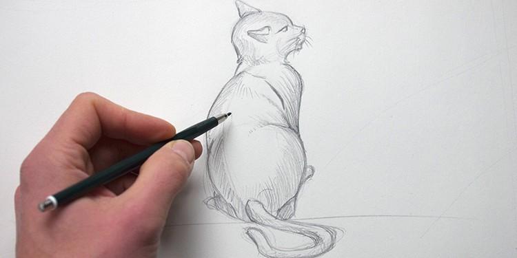 comment dessiner un chat de dos avec dessin-creation