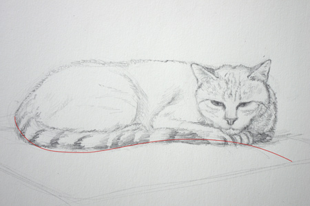 dessiner un croquis de chat