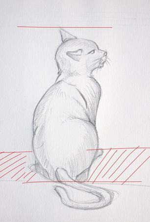 technique pour dessiner un chat en perspective