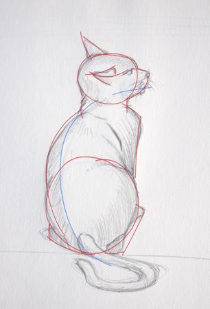 technique de schématisation pour dessiner un chat