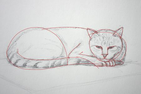 comment dessiner un chat couché facilement