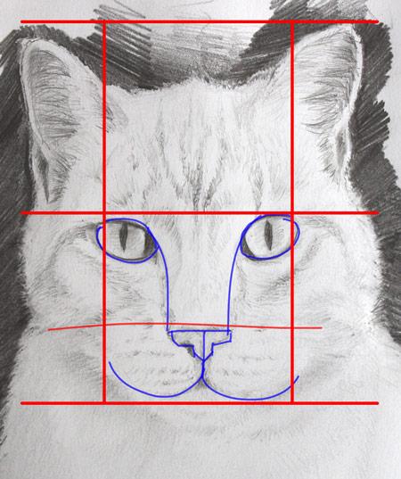 dessiner une tête de chat en la schématisant