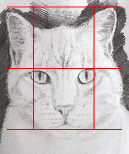 méthode pour dessiner facilement un chat