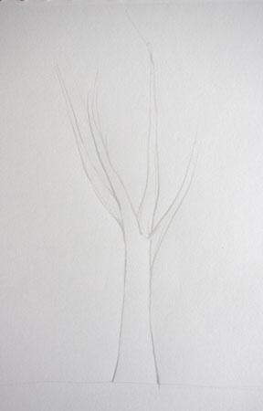 méthode pour dessiner la base d'un arbre