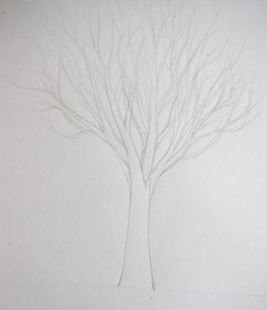 dessiner un arbre sans feuilles