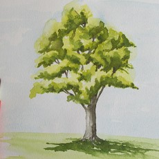 cours d'aquarelle par dessin-creation. Technique simple pour peindre un arbre