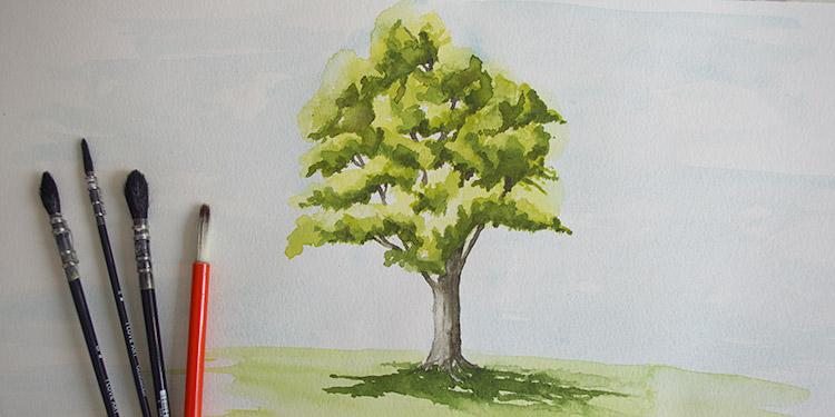 cours d'aquarelle par dessin-creation. Technique simple pour peindre un arbre