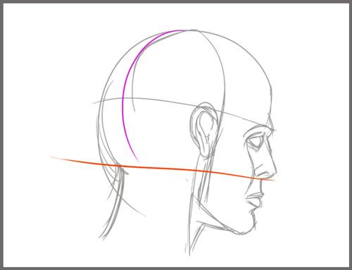 apprendre à dessiner le visage d'un personnage en perspective