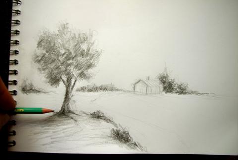 exercice pour dessiner des buissons et un arbre rapidement au crayon