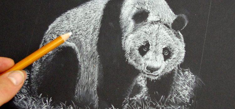 Comment dessiner facilement les poils de chien apprendre - Dessin noir et blanc animaux ...
