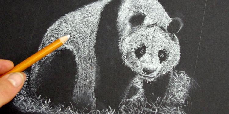 voici une méthode originale pour dessiner un panda en noir et blanc