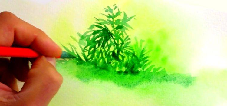 une méthode simple pour apprendre l'aquarelle et peindre un feuillage assez facilement