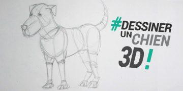 technique et tutoriel pour dessiner un chien en 3d et le modéliser rapidement.