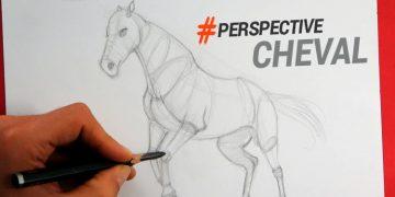 technique simple pour apprendre comment dessiner un cheval en perspective pas à pas
