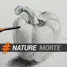 Cours pour apprendre à dessiner des natures mortes pas à pas avec dessin-creation