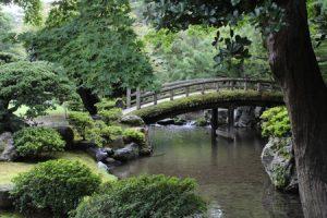 Comment dessiner un jardin japonais avec cette série de cours pour apprendre le desisn de paysage