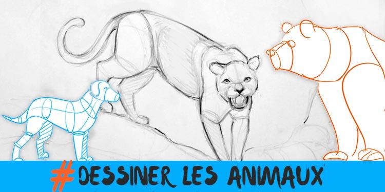 dessiner des animaux plus simplement avec ces techniques simples et ludiques