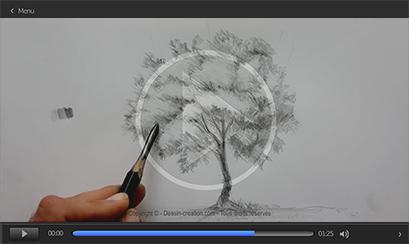 episode pour apprendre à dessiner un arbre complet facilement